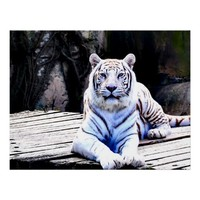 WHITE TIGER PREMIUM CANVAS GLOSS POSTER