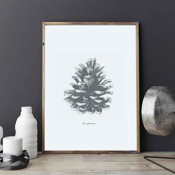 Pine Poster, Pine Cone Decor, Forest Print, Forest Poster, Botanic Poster, Botanic Print, Scandinavian Poster, Scandinavian Print.
