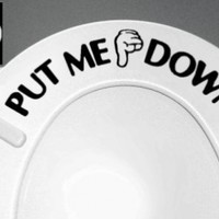 PUT ME DOWN Decal Bathroom Toilet Seat Vinyl Sticker Sign Reminder for Him (free glowindark switchplate decal):Amazon:Everything Else