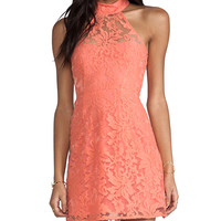 Nookie Sweetest Taboo Dress in Coral