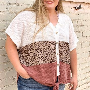 On My Wild Side Color Block Leopard Waffle Knit Top l Plus Size