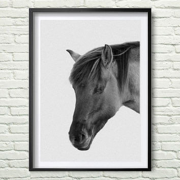 Horse Print, Black and White Photography, Horse Print Wall Art, Wild Horse Photo, Wilderness Print, Equestrian, Printable Art *111*