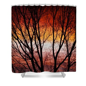 Colorful Tree Branches Shower Curtain