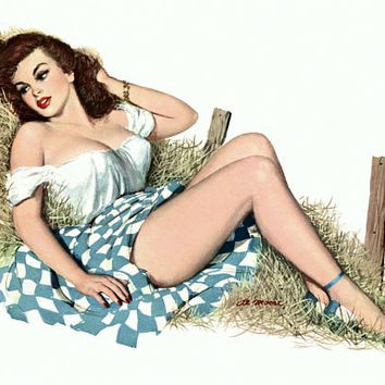 Pinup Poster Brunette At The Farm