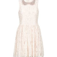 Parisian Pink Floral Lace Embellished Collar Dress