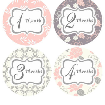 Baby Month Stickers Monthly Onesuit Stickers Baby Girl Pink Grey Floral Month Stickers Monthly Stickers Baby Shower Gift Photo Prop Mary4-R