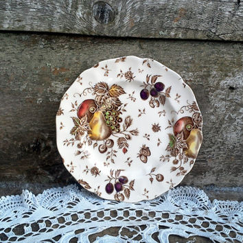 "Johnson Brothers 6 1/4"" Bread and Butter Plate, Brown Polychrome, Transferware Plate, ""Autumns Delight"", Serving, Wall Decor, Autumn Harvest"