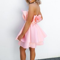 Pretty In Pink Dress: Baby Pink
