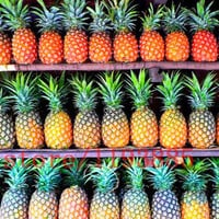 100 pcs/bag pineapple seeds bonsai Organic fruit seeds delicious sweet fruit food plant pot for home garden