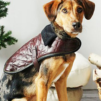 Leather Dog Co. Womens Quilted Leather Dog Jacket