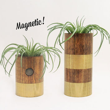 Magnetic Air Planter, Wood Planters, Modern Planters, Air Plant Holders, Unique Planters, Rustic Planters, Indoor Planters, Gold - Set of 2