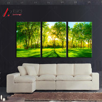 Triptych Home Decoration canvas Sunshine forest Green trees park Large canvas wall art modular painting Print picture no frame