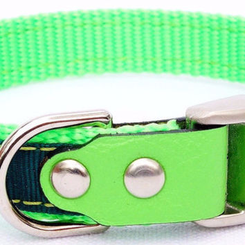 "Dog Collar: Nylon & Ribbon - 5/8"" Wide - Personalized - Lime and Forest Green"