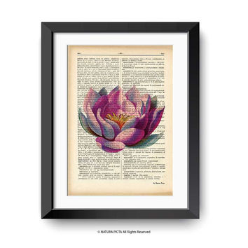Lotus flower print-lotus flower dictionary print-water lily print-Flower on book page-botanical print-home decor-by NATURA PICTA-DP146