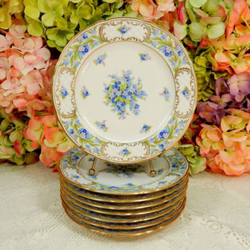 8 Gorgeous Schumann Bavaria Porcelain Salad Plates ~ Forget Me Not ~ Gold Gilt