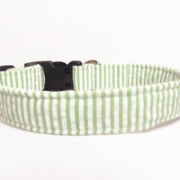 Designer Dog Collar CUSTOM green seersucker - Boy dog collar, spring Dog collar
