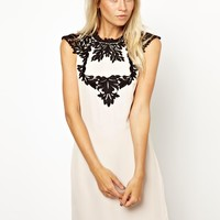 Oasis Lace Applique Shift Dress