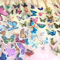 6 butterfly sticker butterfly theme Dancing butterfly colorful butterfly label sticker rare butterfly decor pretty butterfly collection