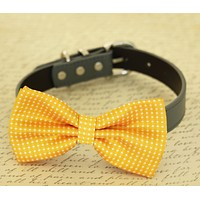 Yellow dog bow tie attached to collar, dog lovers, birthday, beach wedding