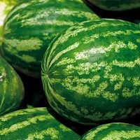 Watermelon Crimson Sweet Seeds (Citrullus lanatus) 25+Seeds