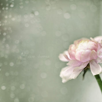 Dreamy Fine Art Photography, Floral Pastel Wall Art, Cottage Chic Decor | 'Rainy Day'