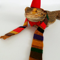 Bearded Dragon Clothing! Dr. Who!