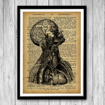 Human head poster Anatomy Medical print Biology art print, Human head Rustic decor, anatomical print, Doctor gift, Cabin decor  (HA15)