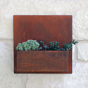 "Metal Succulent Wall Art & Planter - 12"" x 12"" Square with Free Shipping, Hanging Planter and Wall Decor, Vertical Garden"