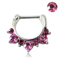 1pc Medical Surgical Steel Purple Red Zircon Gem Septum Nose Clicker Piercing Ring Body Jewerly Nipple 16g