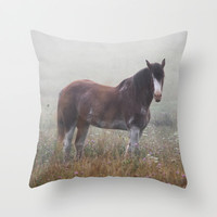 Horse in the Fog Throw Pillow by Don Daugherty