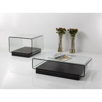 Modern Glass and Wood Coffee Table Set