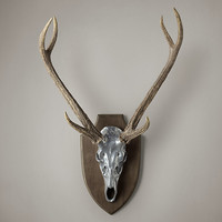 Deer Head in Cast Resin - Aluminum