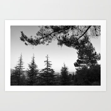 Sunset. Into the woods BW Art Print by Guido Montañés