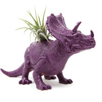 Purple Dinosaur planter with air plant GREAT GIFT for college, office, or desk decor