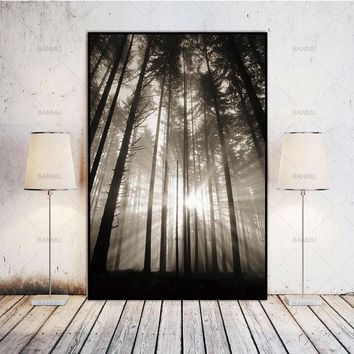 Sun Forest Nordic Abstract Hope Wall Pictures Living Room Landscape Art Decoration Picture Scandinavian Canvas Painting No Frame