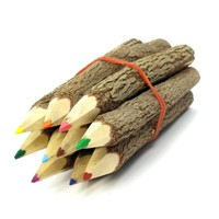 TropicaZona Eco-Tree Colored Pencils, A Set of 10, Approximately 3.5 Inches Long