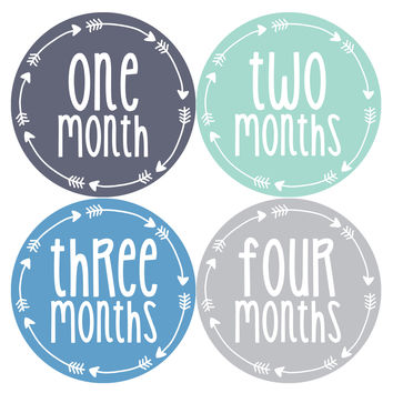 Baby Boy Monthly Milestone Age Stickers Style #1018