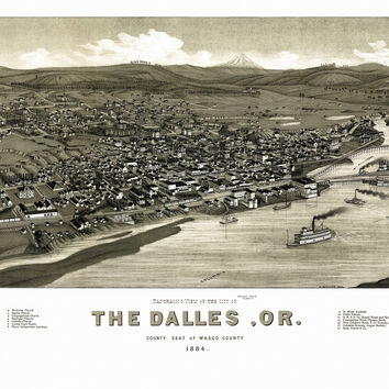 Antique Map of Dalles Oregon 1884 Wasco County
