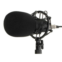 Professional Condenser Microphone Mic