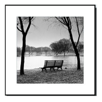 Park Bench at the Lake