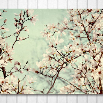 Pink Magnolia Flowers#1 Print, Tree photograph, Home Decor, Mother's Day gift