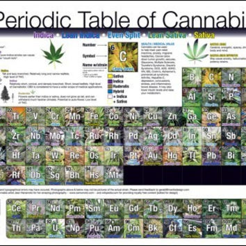 Periodic Table of Cannabis - Poster