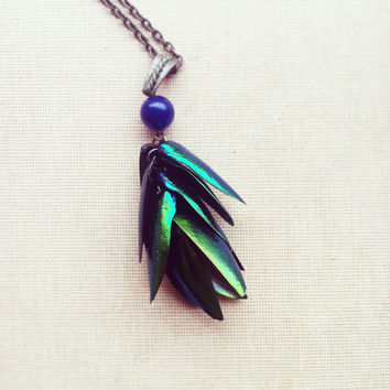 Elytra Beetle Wings Necklace- Real Beetle Wings Green Blue Necklace Pendant Insect Jewelry
