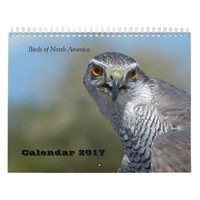 Calendar 2017 - Birds of North America