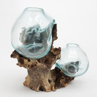 Hand Blown Molten Double Glass and Wood Root Sculptured Terrarium / Vase / Fish Bowl