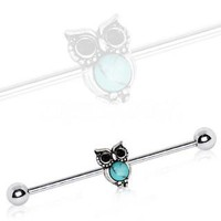 316L Stainless Steel Turquoise Owl Industrial Barbell
