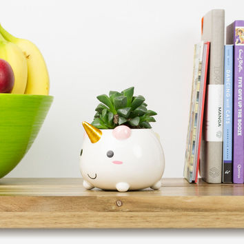 Elodie the Unicorn Planter | FIREBOX\u00ae