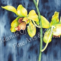 Exotic Tropical Orchid Fine Art Print Yellow Blue Wall Decor 14 x 11