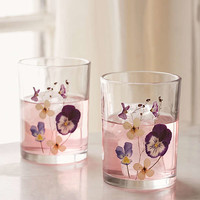 Pressed Floral Glasses Set | Urban Outfitters
