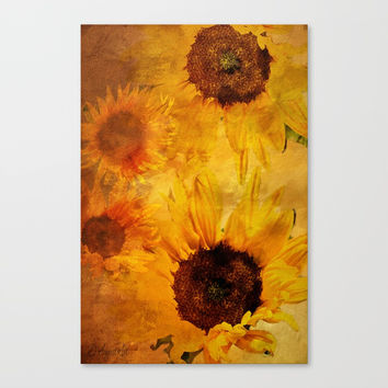 Sunshine On My Shoulder Canvas Print by Theresa Campbell D'August Art